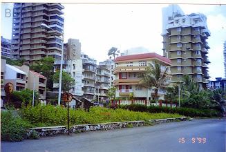 Photo: 1999 - Triangular Sr. Citizens Garden