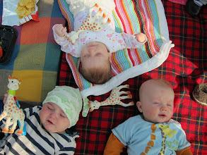 Photo: Three babies, three giraffes :-)