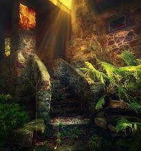 Photo: Rays of Sunlight