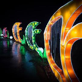 Lantern Festival 12 by Harvey Lindenbaum - City,  Street & Park  Night ( chinese lantern festival, night )