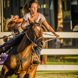Middle of the Run by Jim Davis - Sports & Fitness Rodeo/Bull Riding ( barrel racing, animals, horses, sports, action, people )