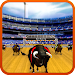 Bull Racing Fever icon