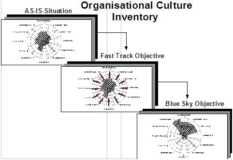 Business Management Bpi Technique Organizational Culture