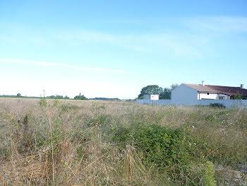 terrain à Plassac (17)