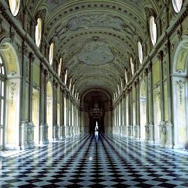 Venaria Reale by Michael Villecco - Buildings & Architecture Public & Historical (  )