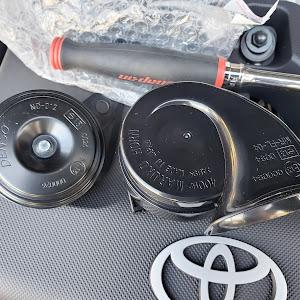 ハイラックス GUN125のカスタム事例画像 gun125さんの2021年10月02日10:25の投稿