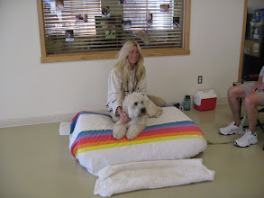Photo: Deb at Dapper Dog Day Spa in Niwot