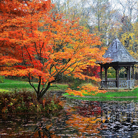 by Steve Wilking - City,  Street & Park  City Parks