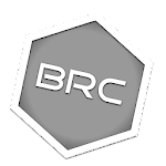 Branch Pro Icon