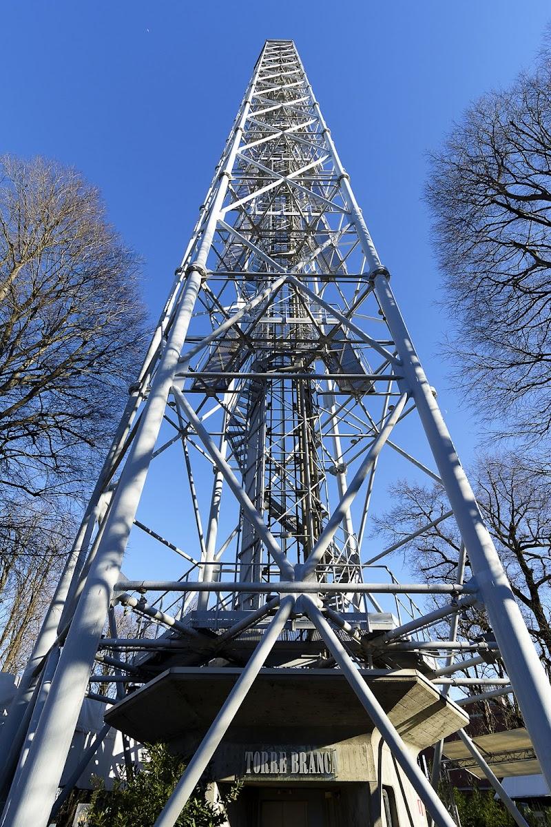 La Torre Branca di Fabio De Vita