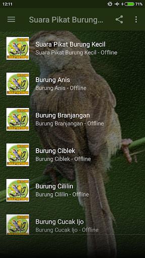 Suara Pikat Burung Kecil Paling Ampuh Mp3 screenshots 2