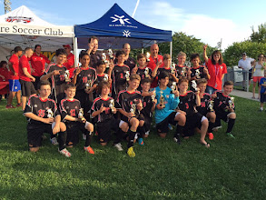 Photo: M12 Mustangs Soccerfest Champions