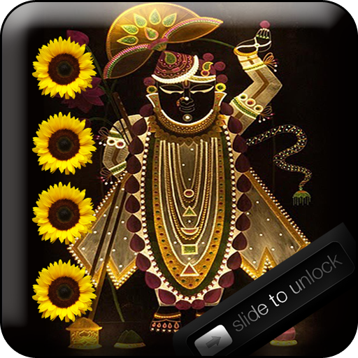 Shreenathji Swipe Lock