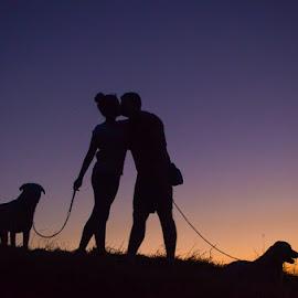 Love by Ljiljana Jovanovic - Uncategorized All Uncategorized ( labrador retriever, love, dogs, best friends, sunset, summer, labrador, photo, people )