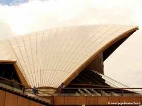 Photo: 005-The Sidney Opera House