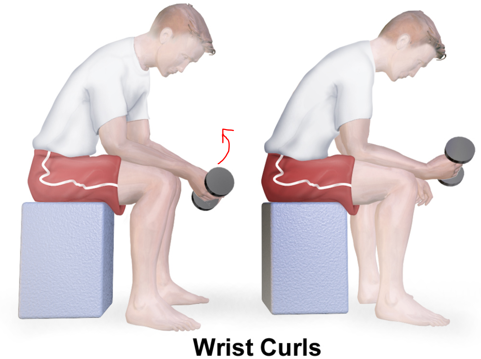 Use wrist curls to strengthen your muscles and reduce numbness while riding a mountain bike