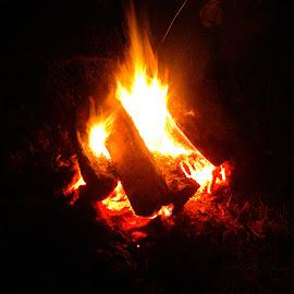 Denton Bonfire by Rita Goebert - Abstract Fire & Fireworks ( bonfires; camping; denton farm camp grounds; north carolina,  )