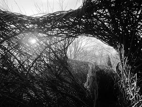 Photo: Wicker Daugherty Exhibit at Wegerzyn Gardens MetroPark in Dayton, Ohio.