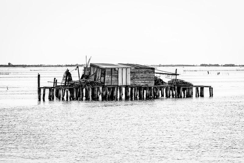 Ma soprattutto: il mare chiama | Alessandro Baricco di Alessandro Zaniboni Ph