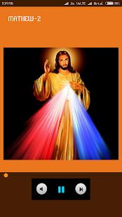 Bible KJV English Audio Ofline - náhled