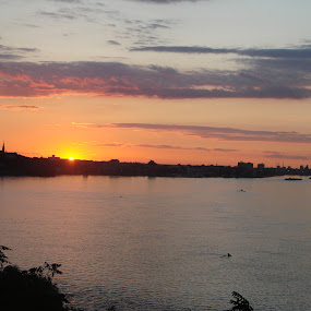 Sunset over a City by Ivan Mendes - Landscapes Sunsets & Sunrises ( clouds, water, distance, sky, sunset, buildings, trees, wildlife, ships, sun, river, city )