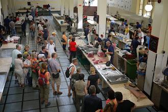 Photo: Le marché aux poissons