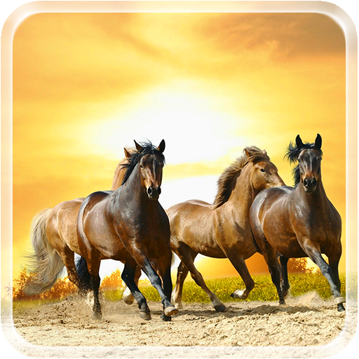Horses Live Wallpaper 個人化 LOGO-玩APPs
