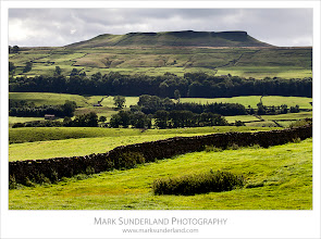 Photo: Addlebrough from Askrigg, Wensleydale  Here's a new shot just processed today from a shoot in Wensleydale last month. I was heading up to have a look at Mill Gill Force near Askrigg but the view of backlit fields across toward Addlebrough caught my eye...  Canon EOS 5D MkII,EF70-200mm f/4L USM at 104mm, 1/320s at f16  #yorkshireukmap +Simon Grew54.316473, -2.089389