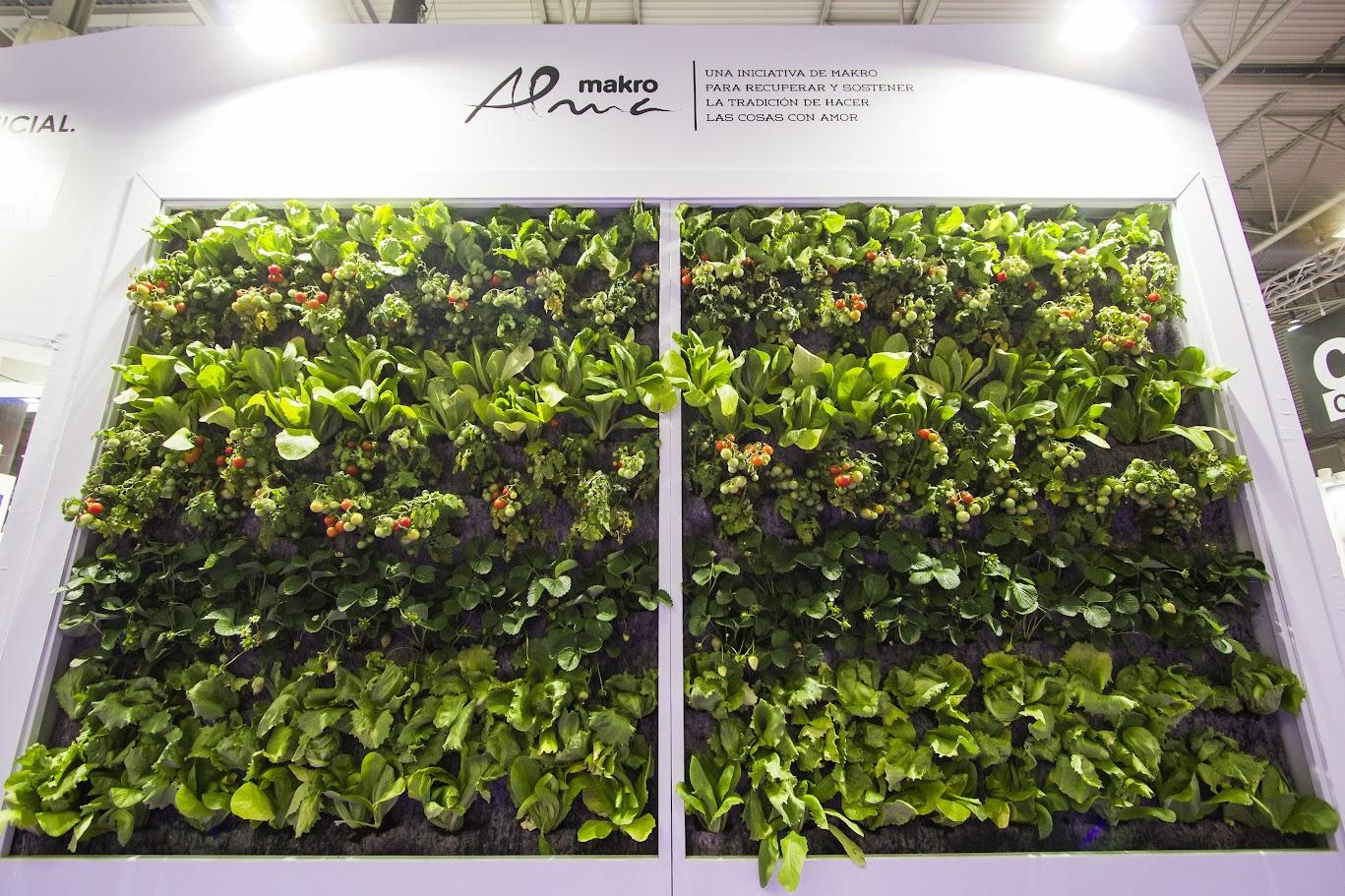 Tomates, lechugas y fresas en un jardín vertical para Huerta vertical