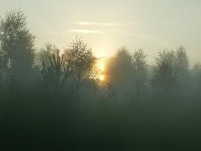 Photo: Udu on looduse vooruslikuim nähtus.