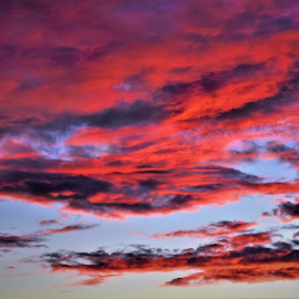 Red Sky by Bar Ivy - Landscapes Weather ( red, blue sky contrast, sunset, bright, clouds,  )