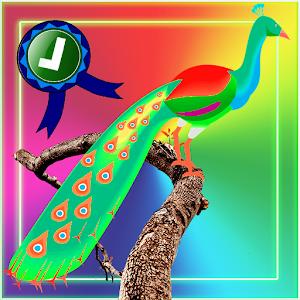 Adventurer Peacock Jumping
