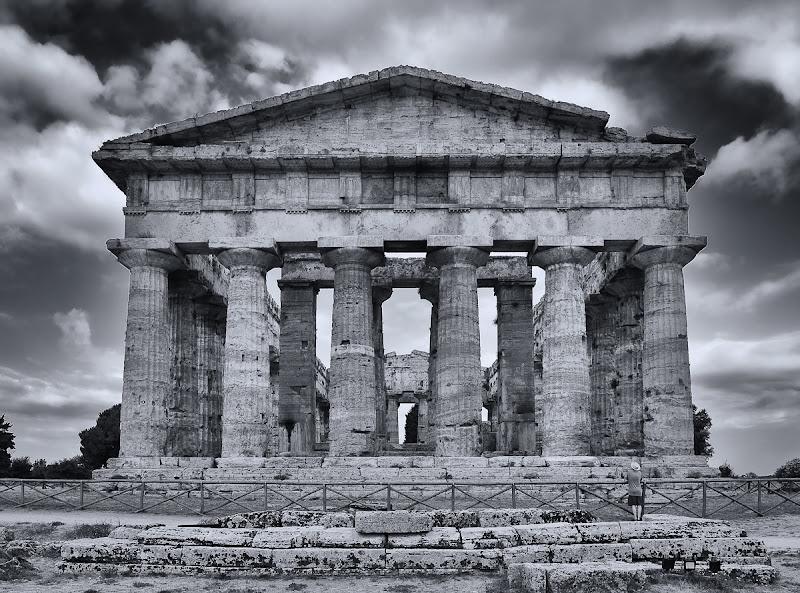 L'arte della memoria di Erato