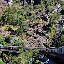 Kuranda Scenic Railway by Sarah Harding - Novices Only Landscapes ( railway, outdoors, novices only, train, travel,  )