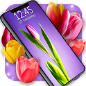 Tulip Wallpapers 🌷 Spring 4K Live Wallpaper icon