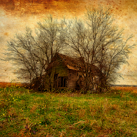 Itasca Farmhouse by Kent Moody - Buildings & Architecture Decaying & Abandoned ( ranch, edit, hdr, farm, winter, baer trees, abandoned, house )