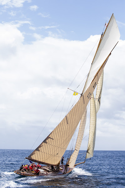 Photo: Tuiga sailing in the Antigua Classic Yacht Regatta, Old Road Race.