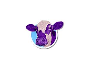 הפרה הסגולה