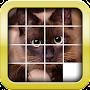 Премиум SliderMania Animals Pro (Puzzles) временно бесплатно