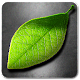 Fresh Leaves v1.8
