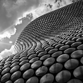 Bubble Arhitecture by Mircea Bogdan - Buildings & Architecture Architectural Detail ( bubble, arhitecture )