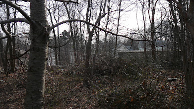Photo: Rear 11 Packard Ln (for pano #9)