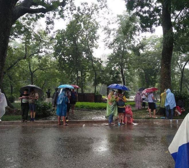 Bức ảnh ở Hồ Gươm trong ngày mưa bão khiến bạn phải