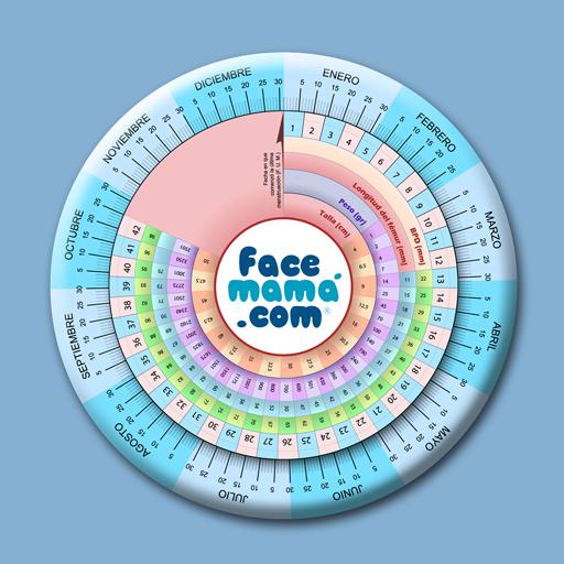 calendario para contar semanas de embarazo