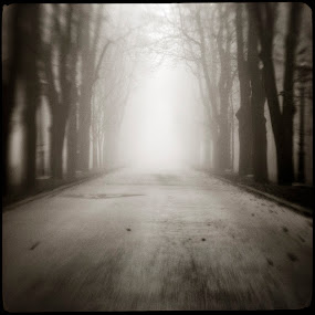 Fog II by Sasa Lazic - City,  Street & Park  Street Scenes ( canon, fog, art, bw, square, lensbaby, road )