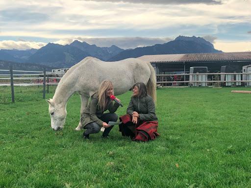 Wieso bringen Pferde unseren Charakter hervor?
