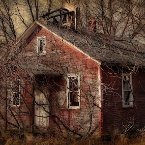 School House Rock by Vivian Gordon - Buildings & Architecture Other Interior ( vigor, dilapidated, school, architecture, historic, rural )
