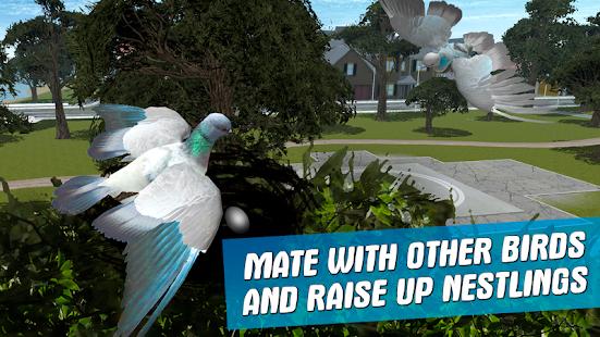 City Bird Pigeon Simulator 3D - náhled