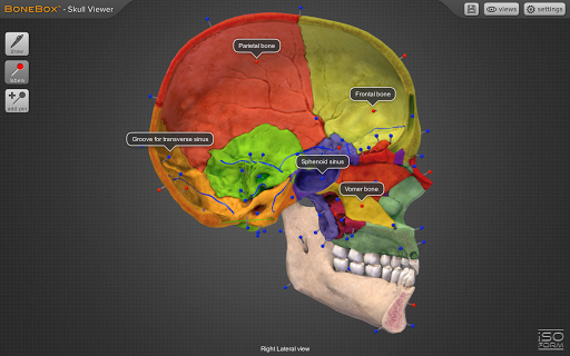 BoneBoxu2122 - Skull Viewer 1.0.0 screenshots 4