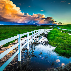 White Picket Fence by Becca McKinnon - Landscapes Prairies, Meadows & Fields ( field, clouds, reflection, grass, green, road, clouds water )